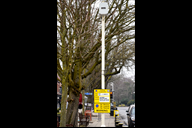 Parking suspension notice for tree works in Formby