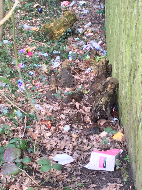 Residents call for action to clear rubbish from around the River Tawd