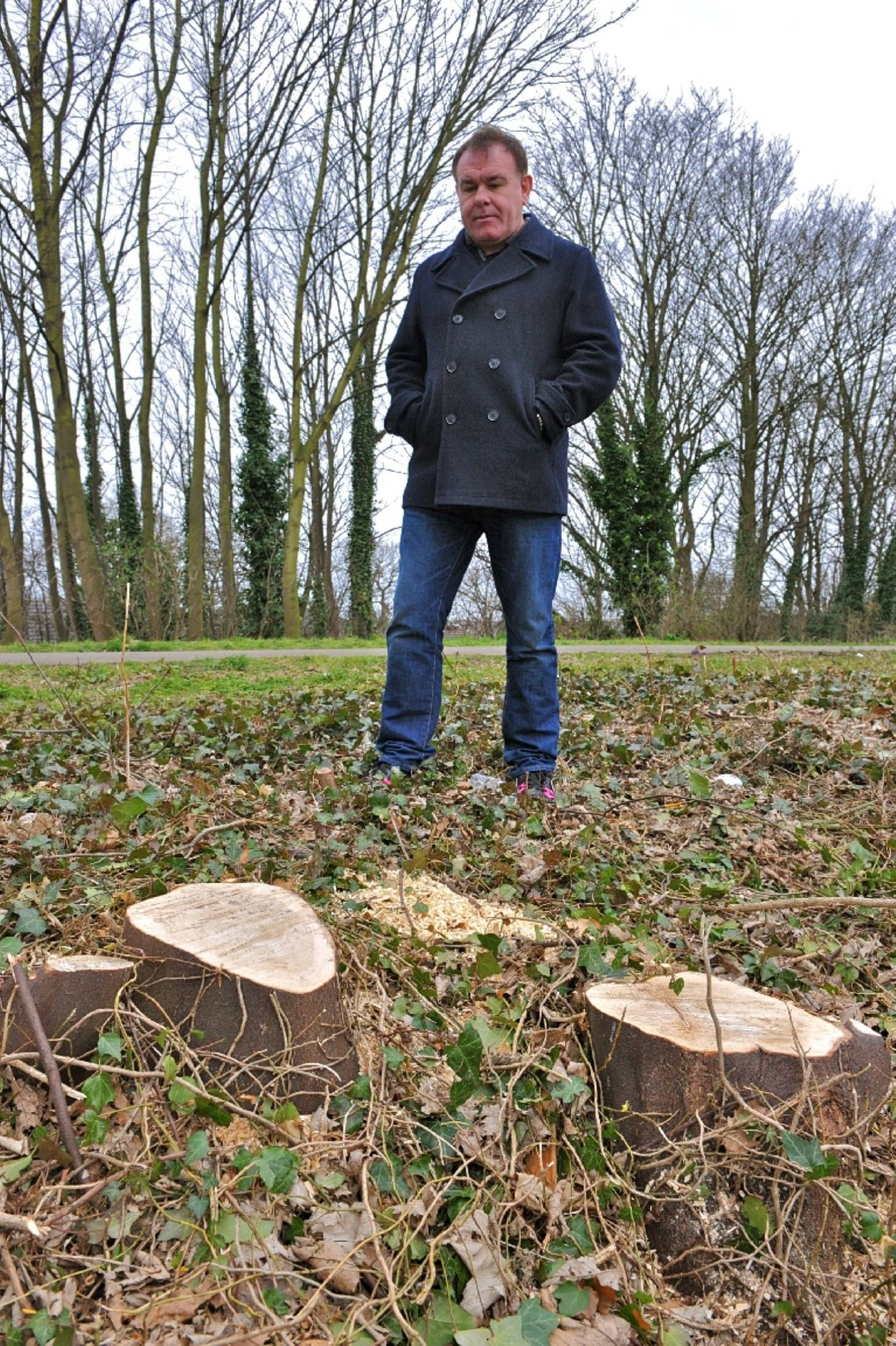 More than 20 trees have been felled on the Trans Pennine Trail
