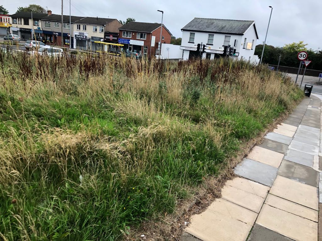 Central Square owners LCP are responsible for 'eyesore' scrubland site
