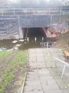 Call for action to tackle flooding at town subway