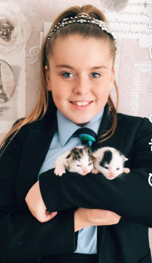 Isabelle stays calm to deliver four kittens!