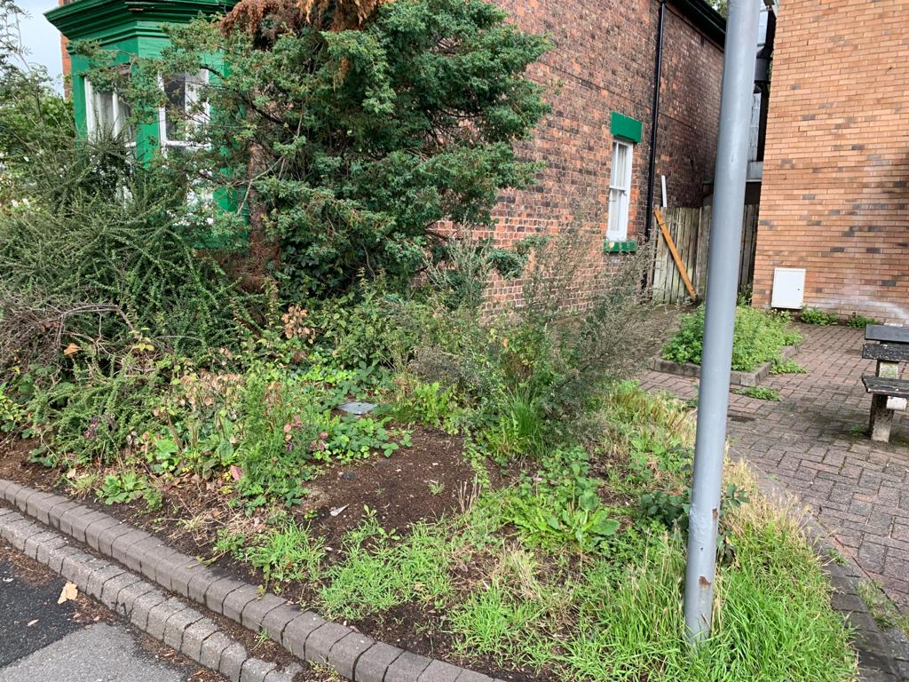 Worried residents raise concerns about overgrown grass in Sefton