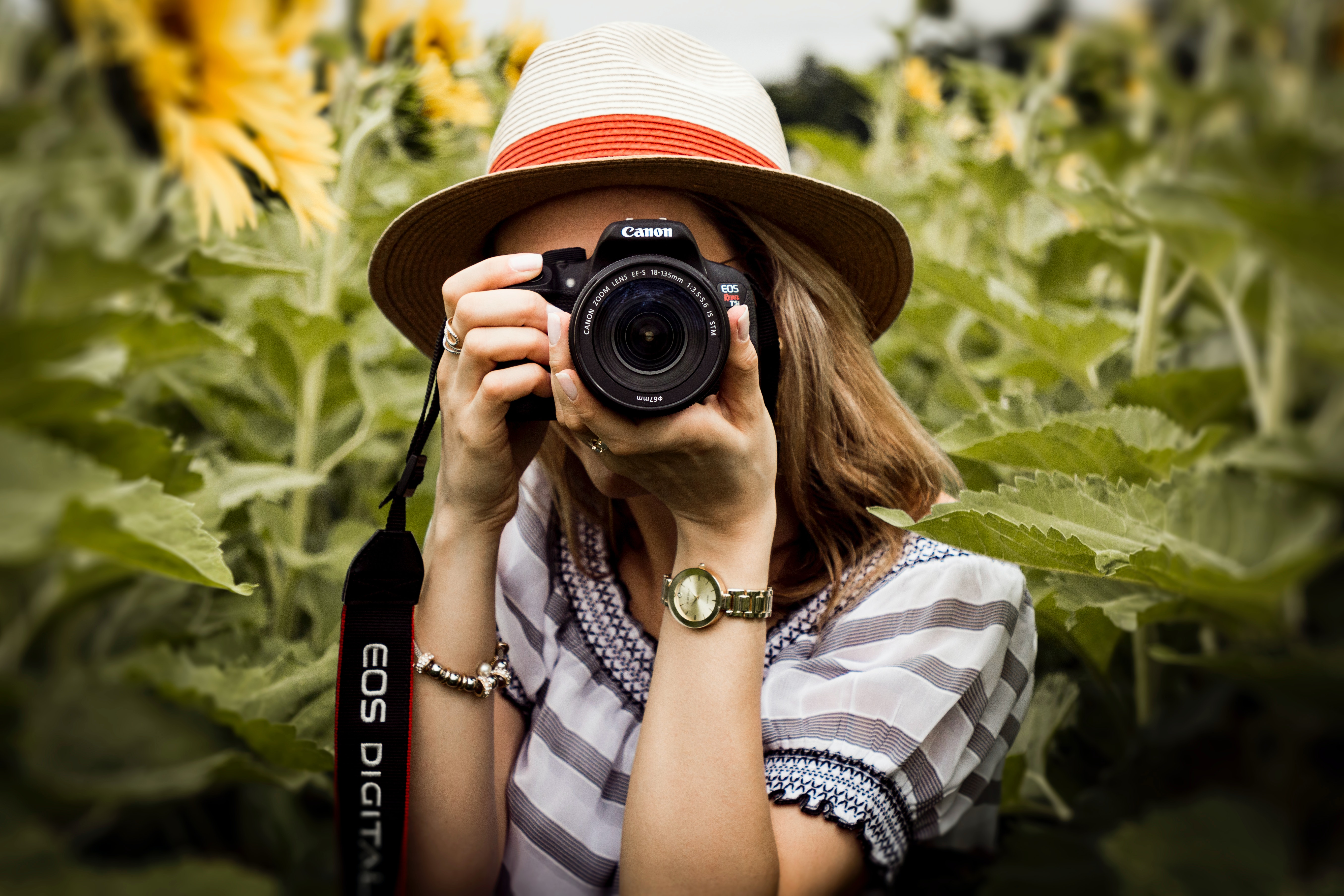 Camera club to resume in-person meetings