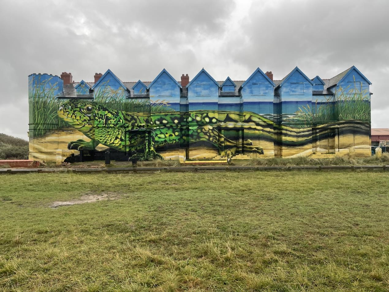 Artist completes his transformation of Toad Hall with painting of a sand lizard