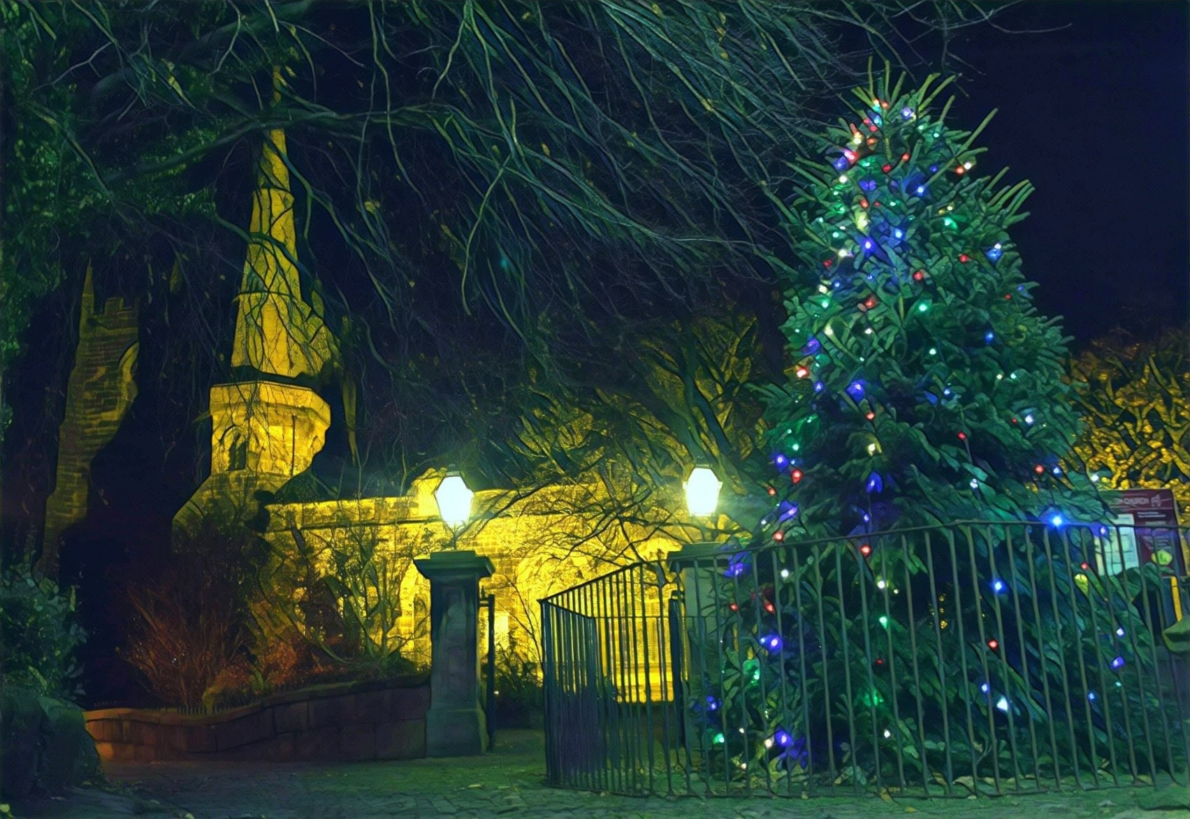 Public support needed for festive tree