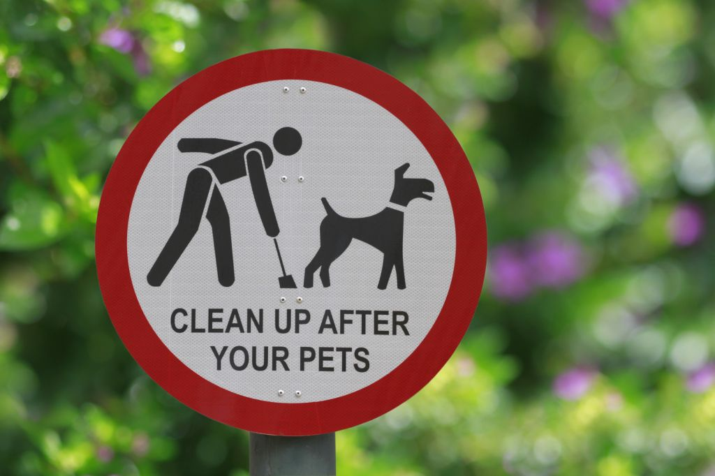 The dog owners who are branded 'too posh to pick up'