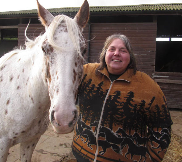 Horse sanctuary launches petition to secure home